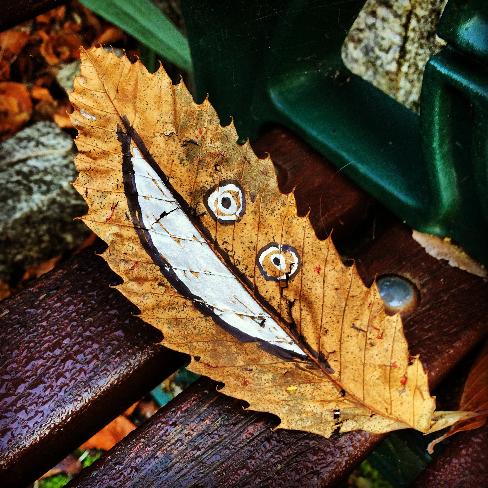Leaf a leafy love-note with Story of Mum
