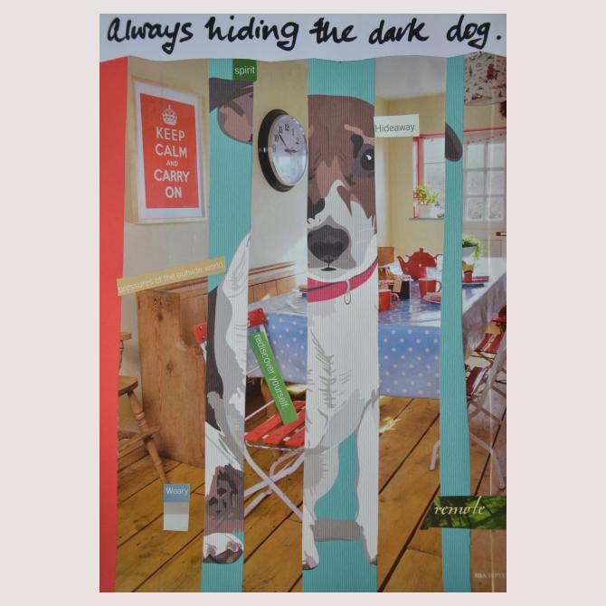 Always hiding the dark dog