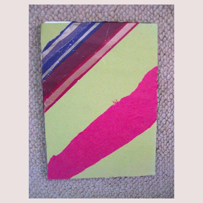 Nicoya's Homemade Book
