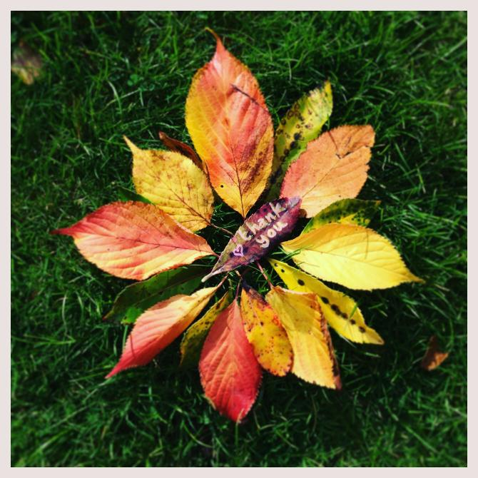 Pippa's Nature Mandala