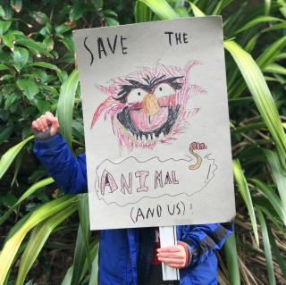 Save the animals protest sign held by boy outside in nature