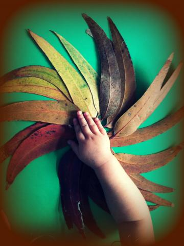 Join #somum on twitter this Weds to make leafy love-notes